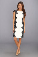 Adrianna Papell Cutaway Lace Dress