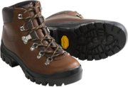 Alico Backcountry Hiking Boots