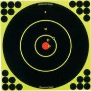 Birchwood Casey 12 Round Target