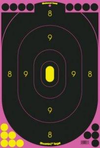 """Birchwood Casey 12"""" X 18"""" Pink Target"""