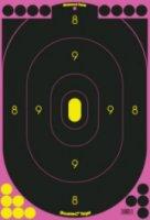 Birchwood Casey 12  X 18  Pink Target