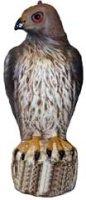 Bird B Gone Bird-B-Gone Hawk