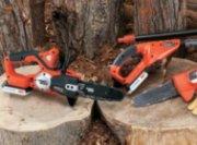 Black & Decker Lithium Chain Saw and Pole Pruner