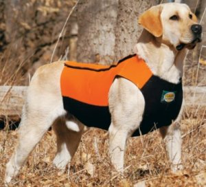 Cabela S Dog Vest Deluxe Chest Protector