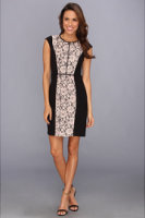 Ivy & Blu Maggy Boutique C/S Lace Insert Sheath Dress