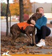 Kurgo Reflect and Protect Dog Vest