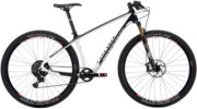 Niner Air 9 RDO 4-Star X01 Complete Bike