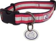 Olly Dog Nightlife II Reflective Dog Collar - Medium/Large