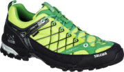 Salewa Firetail GTX Shoes