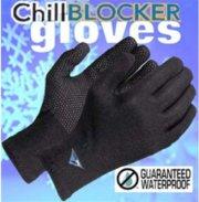 Sealskinz Glove
