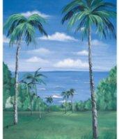 Studio Dynamics General Scenic Series 12x24' Muslin Background Nassau.