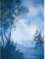 Studio Dynamics General Scenic Series 12x20' Muslin Background Windridge.