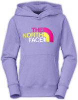 The North Face Multi Half Dome Pullover Hoodie