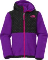 The North Face Denali Hooded Fleece Jacket